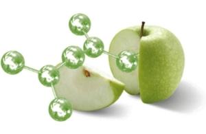 staminali della mela